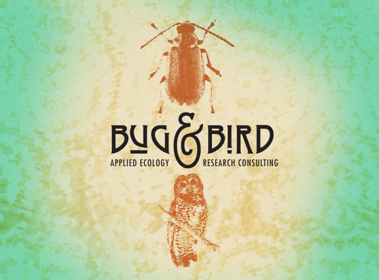 Bug & Bird – Portland